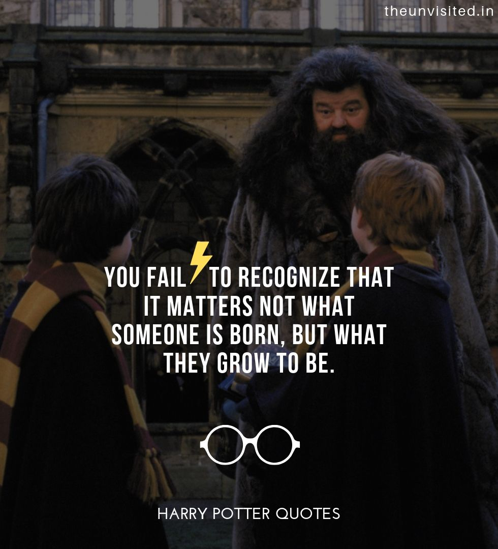 harry potter quotes life love friendship wisdom writings quotes